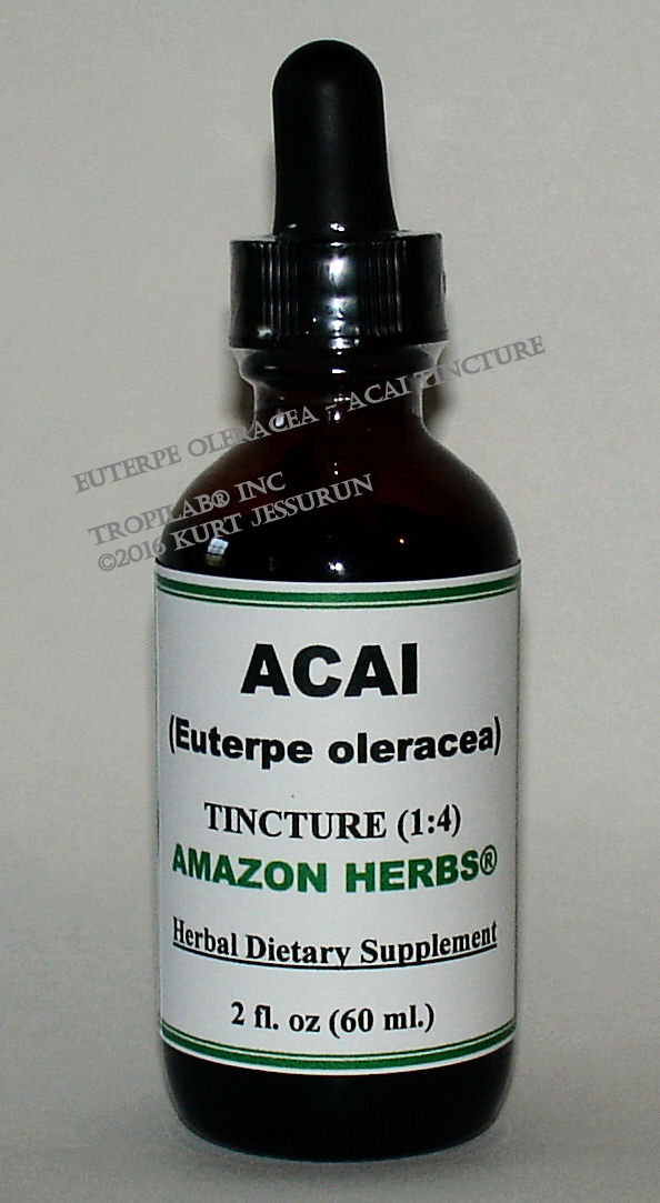 Acai, Euterpe oleracea, herbal tincture (US$18.65 per 2 fl oz) has strong antioxidants; also an 