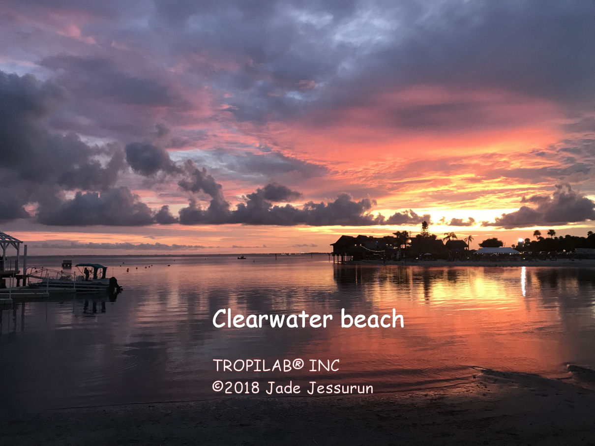 Clearwater strand
