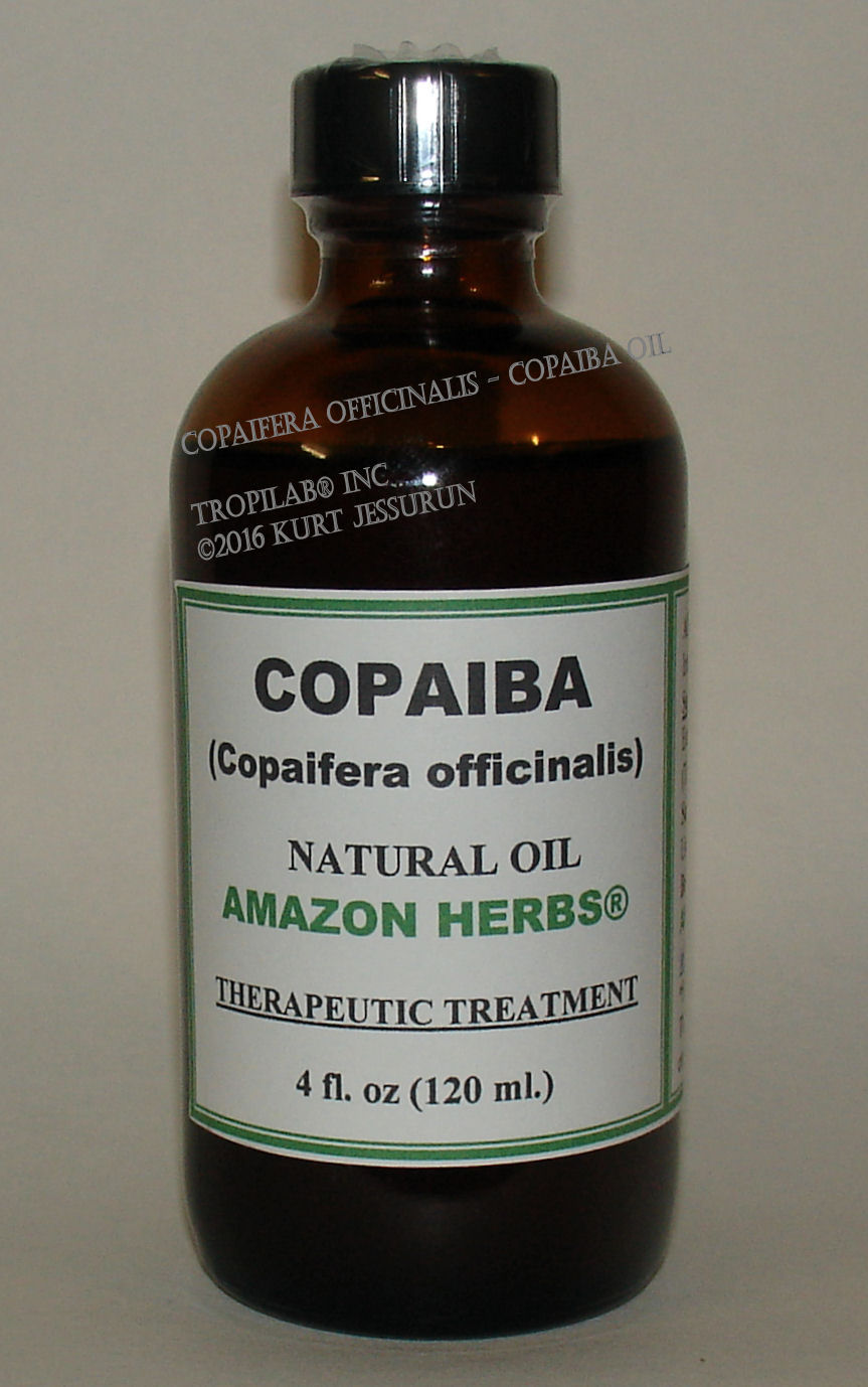 Copaifera officinalis - Copaiba oil