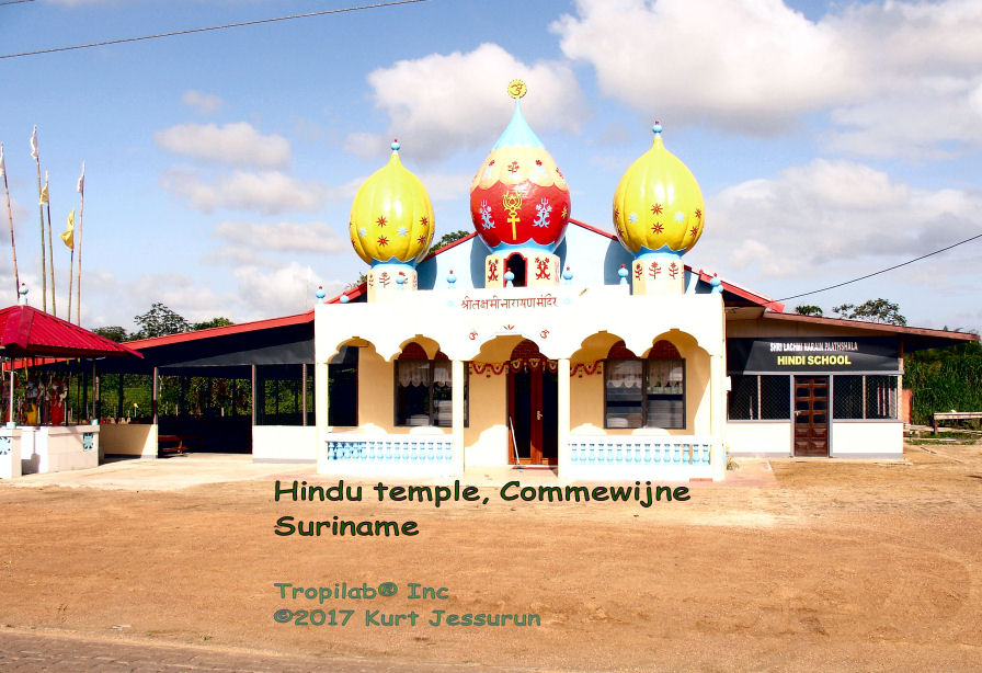 Hindu temple in the Amazon rainforest