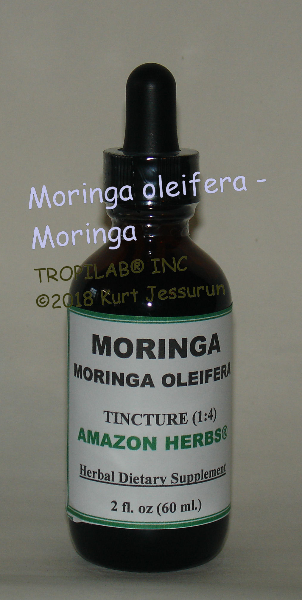 Moringa oleifera tincture - Tropilab. Has many medicinal applications such as 