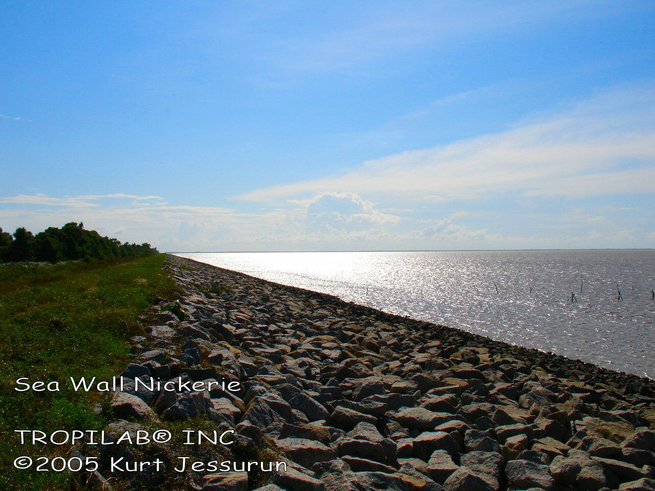 Sea wall Nickerie