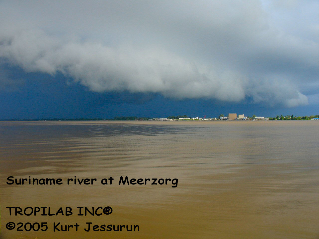 Suriname river at Meerzorg
