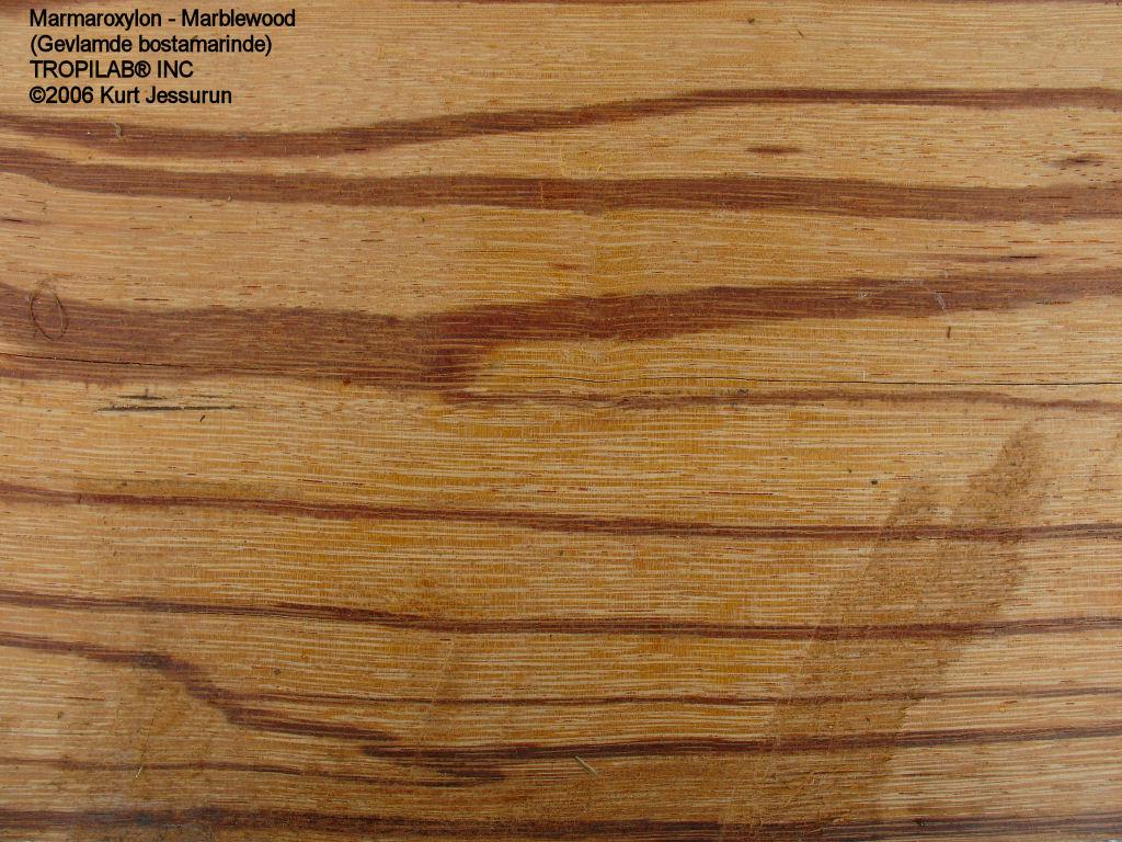 Top Wallpaper Marble Wood - view-marblewood01  2018_48316.jpg